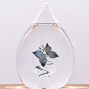 As in glas vlinder