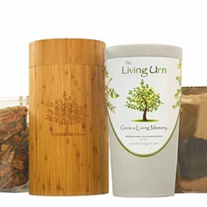 Urn living urn bio