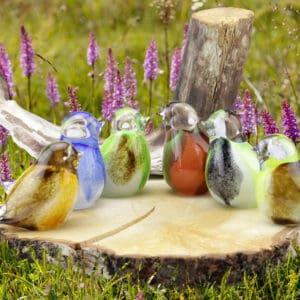Urn vogel glas