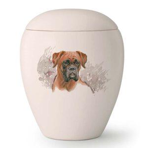 Hondenurn boxer