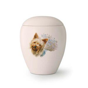 Hondenurn yorkshire terrier
