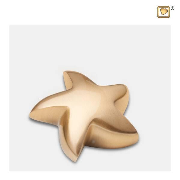 K620 Urn mini messing ster mat goud