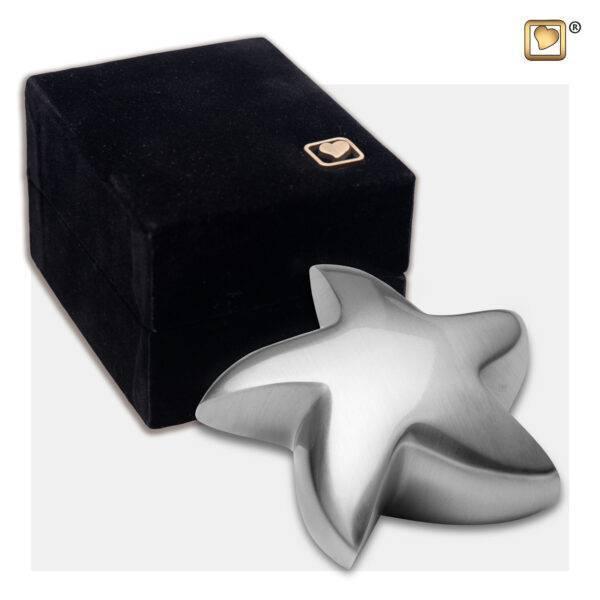 K623 Mini urn messing ster mat zilver