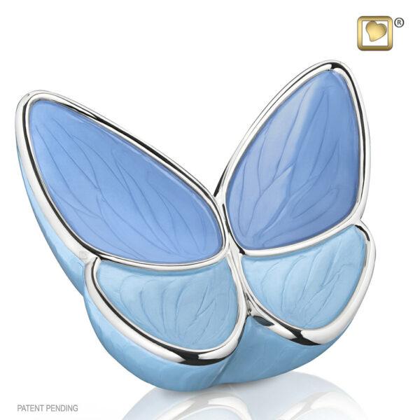 Urn blauw vlinder