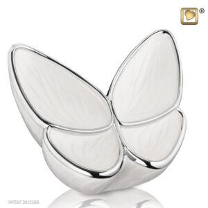 Urn vlinder wit