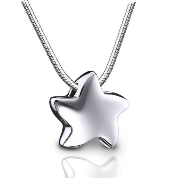Ashanger zilver ster