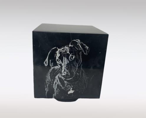 Cubos urn dierenurn