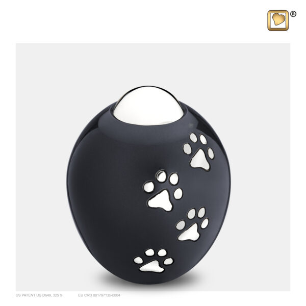 P636S Adore urn groot