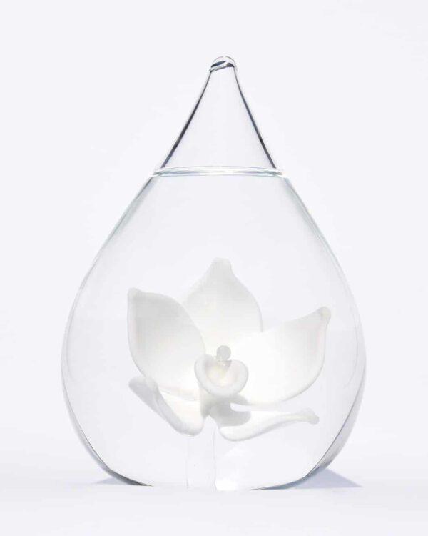 Glazen urn lotusbloem crematie as