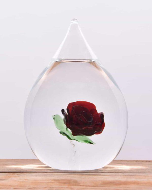 Glazen urn roos crematie as
